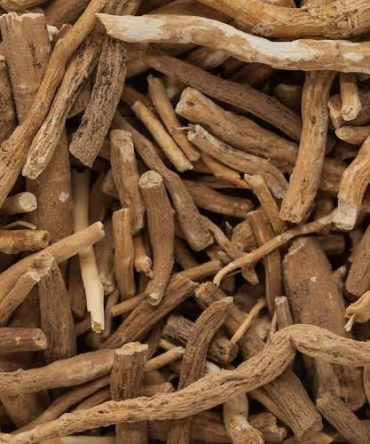 Ashwagandha /Dried Winter Cherry / அஸ்வகந்தா