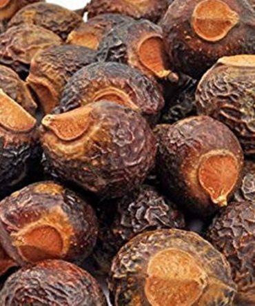 Boonthi Kottai / Dried Soapnut / பூந்தி கொட்டை