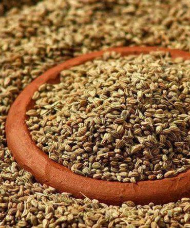 Korasanai Omam / Ajowan Seeds / குரோசாணி ஓமம்