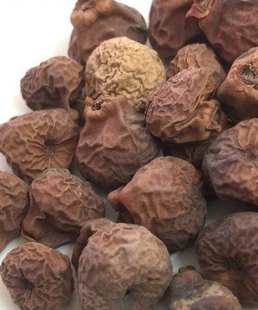 Arasam palam / Dried  Peepal fruit / அரசம் பழம்