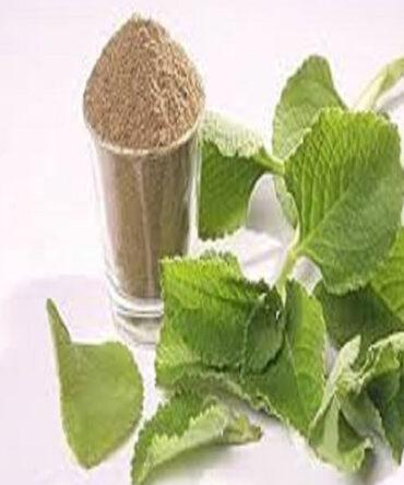 Ajwain Leaf Powder / Karpooravalli  / கற்பூரவல்லி பொடி