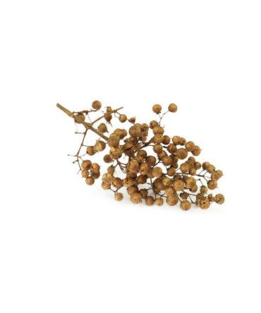 Maruthani Vithai(Podi) / Henna Seed Powder/ மருதாணி விதை பொடி