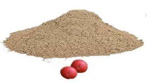 Arasam Palam podi / Peepal Fruit Powder/அரசம் பழம் பொடி