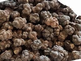 Manjanathi palam / Dried Nuna fruit / மஞ்சனத்தி