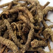 Kadugurohini / Kutki Root / கடுகுரோகிணி