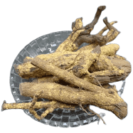 Ekanayakam / Marking Nut Tree Bark / Ponkoranti / koranti / ஏகநாயகம்