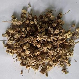 Yanai Nerunjil (Raw) / Dried Large Caltrops  /  யானை நெருஞ்சில்