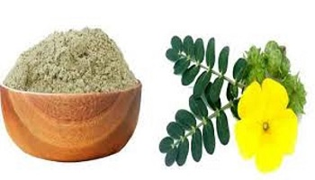 Yanai Nerunjil(Powder) / Large Caltrops Powder / யானை நெருஞ்சில்