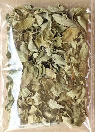 Yelumbu otti ilai / Creeping Blepharis Leaves (Raw) / எலும்பு ஒட்டி இலை