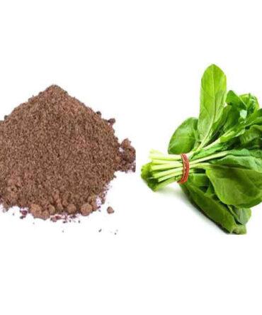 Kasinikeerai (Powder) / Chicory Leaves Powder/காசினிக்கீரை