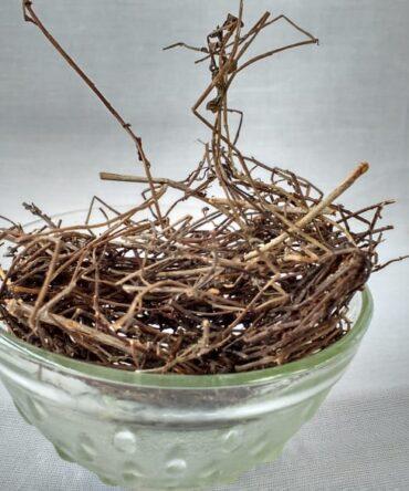 Muthiyar Koonthal / Dried Sunk Vine / முதியார் கூந்தல்